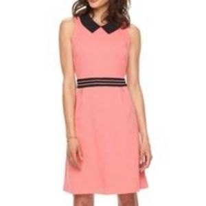 Elle adorable flirty collared salmon fit & flare